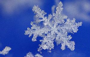 Как поднять себе настроение в морозный день